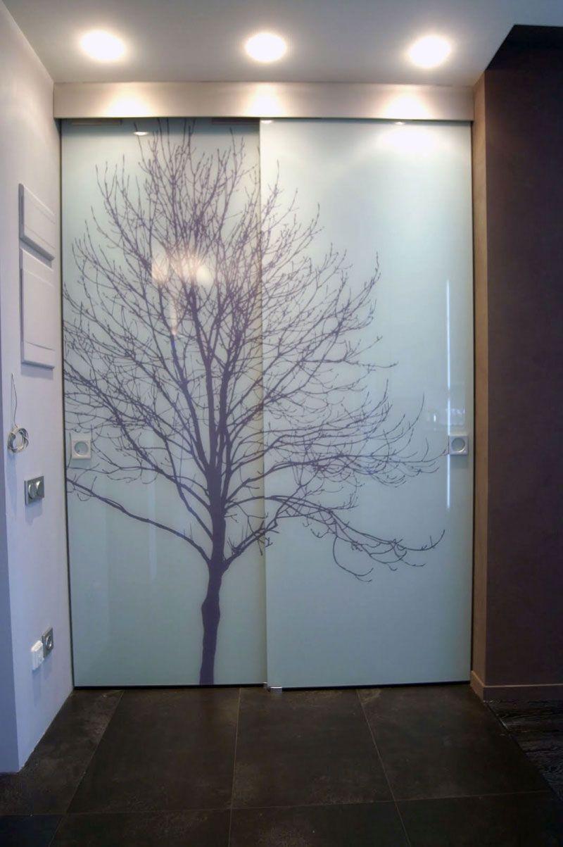 Шкаф купе стеклянные двери фото